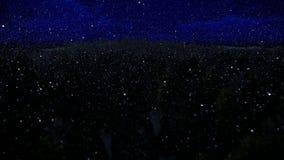 Über Forest Hills und Meer kreuzen, schöne Nacht, schneiend lizenzfreie abbildung
