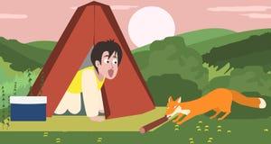 Über Nacht kampierend, Fuchs, der Lebensmittel stiehlt Stockbilder
