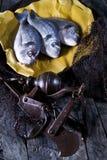 Über Seebrassen-Fischschuppen Stockbild