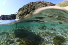 Über u. unter Japan der geheime Unterwassersteingarten stockfoto