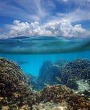 Über und unter Oberfläche des karibischen Meeres Stockfotografie