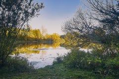Überblick über der Bewahrungszone am See viehofen Lizenzfreie Stockfotos