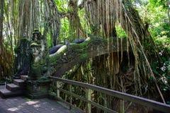 Überbrücken Sie im Affe-Wald in Ubud, Bali, Indonesien Lizenzfreies Stockfoto