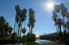 Überbrücken Sie Landschaft unter den Strahlen des aufgehende Sonne auf einem blauen Himmel Lizenzfreie Stockbilder