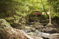 Überdachte Brücke im Wald Lizenzfreies Stockfoto