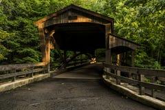 Überdachte Brücke - Mühlnebenfluss-Park, Youngstown, Ohio Stockfotografie
