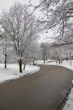 Überdachung von schneebedeckten Bäumen u. von wohlerhaltener Stadtstraße Stockfotos