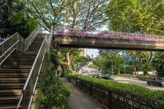 Überführung und Foilage - Singapur stockbild