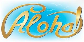 Übergeben Sie Aufschrift aloha in den Goldbuchstaben, blauer Himmel mit Möven, hawaiischer Gruß lizenzfreie abbildung