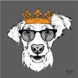 Übergeben Sie Bild-Porträt des abgehobenen Betrages des Cockerspaniels in der Krone Gebrauch für Druck, Poster, T-Shirts Vektoril Lizenzfreies Stockfoto
