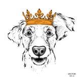 Übergeben Sie Bild-Porträt des abgehobenen Betrages des Cockerspaniels in der Krone Gebrauch für Druck, Poster, T-Shirts Vektoril Stockfotos