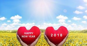 Übergeben Sie das Anheben des roten Herzens auf dem Sonnenblumengebiet Stockfoto