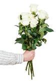 Übergeben Sie das Geben des Blumenstraußes vieler weißen lokalisierten Rosen Lizenzfreies Stockbild