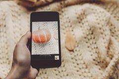 Übergeben Sie das Halten des Telefons und das Machen des Fotos des Kürbises und des Blattes auf warmem Lizenzfreies Stockfoto