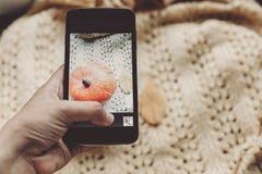 Übergeben Sie das Halten des Telefons und das Machen des Fotos des Kürbises und des Blattes auf warmem Stockfotos