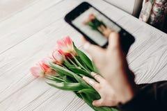 Übergeben Sie das Halten des Telefons, welches das Foto der stilvollen Blumenebenenlage macht, rosa Lizenzfreies Stockbild