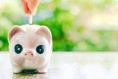 Übergeben Sie die Rettung einer Münze in Sparschwein auf unscharfer grüner natürlicher Rückseite Stockbild