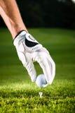 Übergeben Sie Einfluss-Golfball mit T-Stück auf Kurs Stockfotos