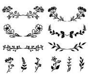 Übergeben Sie gezogene Blumenmusterelemente, -anlagen und -blumen Lizenzfreies Stockbild
