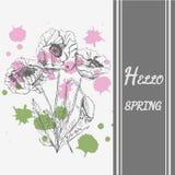 Übergeben Sie gezogene farbige und grafische Skizze mit Mohnblumenblumen Vintag stock abbildung