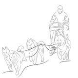 Übergeben Sie gezogene Illustration von den Hunden, die einen Schlitten ziehen stock abbildung