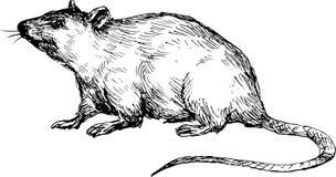 Übergeben Sie gezogene Maus Stockfoto