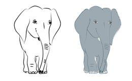 Übergeben Sie gezogene Vektorillustration mit einem netten Elefantmonochrom und färbte Stockbild