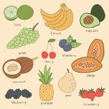 Übergeben Sie gezogenen Frucht-Illustrations-Vektor - Kalk, Banane, Avocado, Traube, Kirsche, Blaubeere, Papaya, Kokosnuss, Bromb Stockbilder