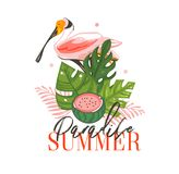 Übergeben Sie gezogener Vektorzusammenfassung grafische KarikaturSommerzeit flaches Illustrationszeichen mit tropischen Vögeln, t Lizenzfreie Stockfotografie