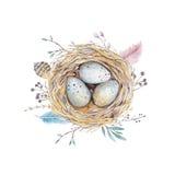 Übergeben Sie gezogenes Aquarellkunst-Vogelnest mit Eiern, Ostern-Design Lizenzfreie Stockfotografie