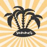 Übergeben Sie gezogenes Weinleseplakat mit Typografie, Sonnenstrahlen und Palmen Vektorillustration - Sommer Lizenzfreie Stockfotos