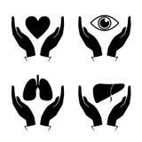 Übergeben Sie Griffherz, Auge, Lunge, Leberikonen Stockfotografie