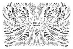 Übergeben Sie skizzierte Vektorweinlese-Elementlorbeer, Rahmen, Blätter,