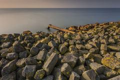 Überlaufrohr in See bei Sonnenaufgang Stockfotos