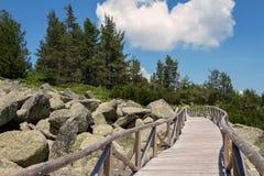 Überraschende Ansicht von Zlatnite Mostove u. x27; Goldenes Bridges& x27; - Steinfluß in Vitosha-Berg, Bulgarien lizenzfreies stockfoto