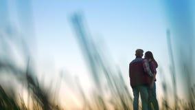Überraschende Gesamtlänge des Paarfreundes und seine Freundin, die weit steht und voran im hohen Gras, zusammen entspannend schau stock video