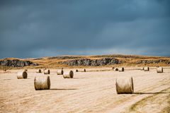 Überraschende nordische Landschaft, Island Heustapel auf Feld Idyllisches Tal mit Gebirgsskylinen stockfoto