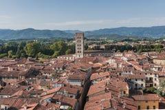 Überraschende rote Dachspitzen von Lucca bei Toskana in Italien stockfoto