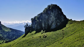 Überraschender Kaukasus Lizenzfreie Stockfotografie