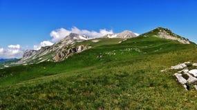 Überraschender Kaukasus Lizenzfreie Stockbilder
