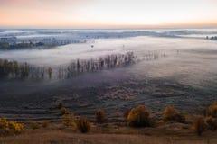 Überraschender magischer violetter Sonnenaufgang mit Nebel Naturschlafen Nebelige Stimmung stockfotos