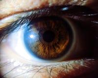 Überraschendes menschliches Auge im Makro lizenzfreies stockfoto