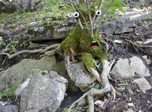 Überraschter Baum Lizenzfreies Stockbild