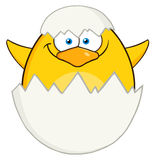 Überraschung gelber Chick Cartoon Character Out Of Eierschale Stockfoto