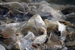 Überschüssiger Plastik, schmutzige Plastiktaschen auf dem Oberflächenwasser, überschüssige Plastiktaschen tut nicht der zerlegte  Lizenzfreies Stockfoto