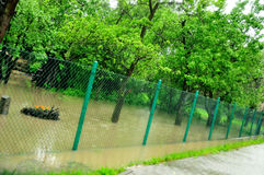 Überschwemmen Sie in Polen - Schlesien, Zabrze, Fluss Klodnica Stockbilder