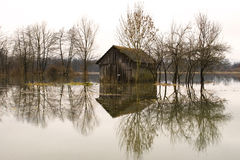 Überschwemmte Felder Stockfotos