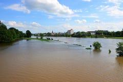 Überschwemmte Landschaft auf dem Fluss Elbe Lizenzfreie Stockbilder