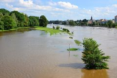 Überschwemmte Landschaft auf dem Fluss Elbe Stockbild