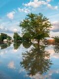 Überschwemmte Nachbarschaft Stockfotografie